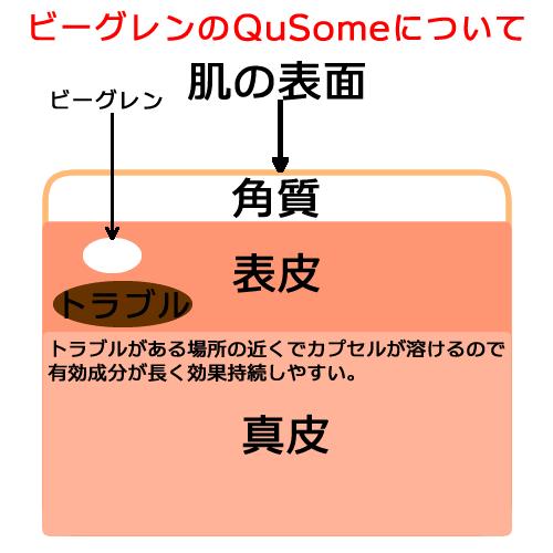 QuSomeについて